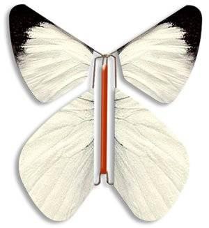 Tarjetas De Invitación Sorpresa En Video Mariposas